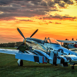 P-51D @ Sunset by Stephen Kennedy - Transportation Airplanes ( mustang, static, wwii, plane, warbird, airplane, sunset, aircraft, display, p-51d, fighter )
