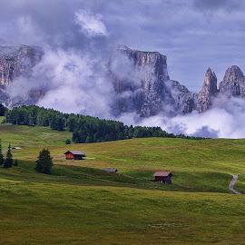Alpe di Siusi XV by Stefano Landenna - Landscapes Mountains & Hills ( trentino, mountain, scillar, dolomites, italy )