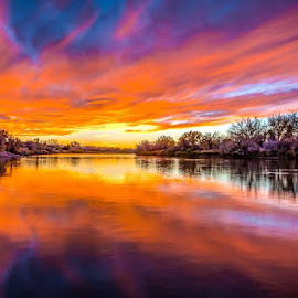 by Shaun Peterson - Landscapes Sunsets & Sunrises ( mirror, reflection, sunset, wyoming, reflections, river )