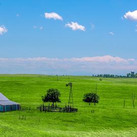 A South Dakota Landscape by Gary Hanson - Landscapes Prairies, Meadows & Fields ( field, clouds, shed, grass, south dakota, landscape, windmill )
