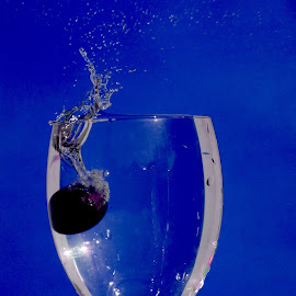 Grape splash blue by Anthony Doyle - Abstract Water Drops & Splashes