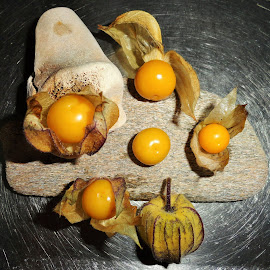 The Meeting by Marion Metz - Food & Drink Fruits & Vegetables ( fruit, cape gooseberries, ripe, health, new zealand )