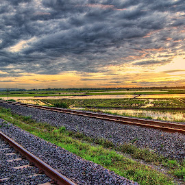 railways sunrise in contryside by Darlis Herumurti - Landscapes Prairies, Meadows & Fields