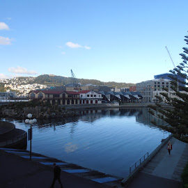Calm Waters by Kenneth Peters - City,  Street & Park  Vistas ( sky, wellington, morning, waterfront, new zealand )