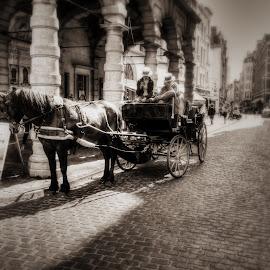 Carriage tour by Dimitar Balyamski - City,  Street & Park  Street Scenes