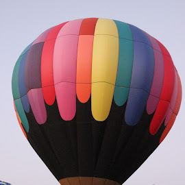 Hot Air Balloon by Amara Dempsey - Transportation Other ( ride, hot air balloon, rides, novice, aircraft, sports, sport, festival, transportation, hot air balloons )