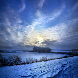 Blue Horizons by Phil Koch - Landscapes Prairies, Meadows & Fields ( vertical, farmland, yellow, leaves, agricul  ture, love, sky, tree, nature, autumn, snow, perspective, light, orange, twilight, art, horizon, portrait, winter, dawn, environment, season, serene, trees, lines, inspirational, wisconsin, natural light, ray, beauty, landscape, phil koch, sun, photography, farm, horizons, inspired, clouds, office, park, green, beautiful, scenic, morning, shadows, field, red, blue, sunset, peace, meadow, summer, beam, sunrise, earth )