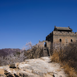 Great Wall (again!) by Qin Jue Hang - Landscapes Travel ( d610, great wall, landscape, beijing )