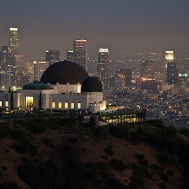 Griffith Observatory by Dean Mayo - City,  Street & Park  Skylines ( griffith observatory, los angeles, night, cityscape, dean mayo )