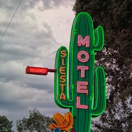 Just Kidding by Michael Buffington - City,  Street & Park  Street Scenes ( neon, green )