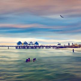 Busselton, Western Australia by Julia Harwood - Landscapes Travel ( water, sea, ocean, jetty, beach, new years eve )
