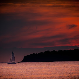 Sailing at Dusk by Ron Meyers - Transportation Boats