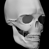 Free Bones Human 3D (anatomy) APK for Windows 8