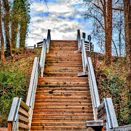 Steps by Carol Plummer - City,  Street & Park  City Parks (  )