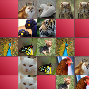 Animals Matching Game Icon
