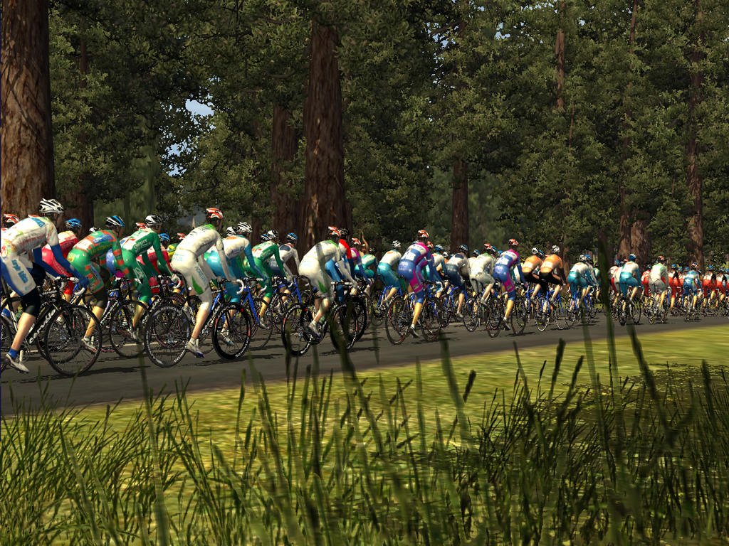 Pro Cycling Manager - Tour de France 2008