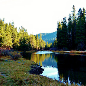 Truckee River 1 by Samantha Linn - Landscapes Waterscapes