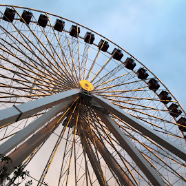 Ride of 1893 by Allison Kolander - City,  Street & Park  Amusement Parks ( ride, navy pie, color, pier, summer, chicago, summer fun, ferris wheel,  )