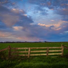 by Jeanne Knoch - Landscapes Prairies, Meadows & Fields (  )