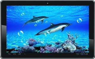 Screenshot of Dolphin Sounds Live Wallpaper