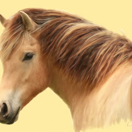 Dunny by Linneus Ahearn - Painting All Painting ( icelandic, fiord, pony, bucksin, horse, mixed media, painting, digital )