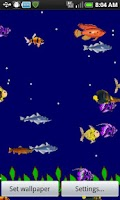 Screenshot of Easy Aquarium Live - Free