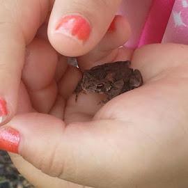 AVA holding a baby toad  by Nancy Gehrung - Babies & Children Hands & Feet ( little hands )