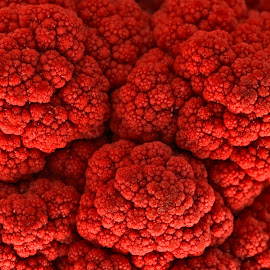 Cauliflower Kiss by Nicolas Raymond - Nature Up Close Gardens & Produce ( faces, nutrient, purity, round, vibrant, colour, contrast, love, circular, kiss, shallow depth, macro, monochromatic, colourful, january, focus, surreal, lover, black, fruit, kissing, brassica, raspberry, shallow, texture, white, agriculture, happiness, loving, monotone, health, somadjinn, nutrients, pure, nutrition, sweet, crimson, cauliflower, food, depth of field, hot, warmth, vegetable, conceptual, mood factory, plant, focal, face, concept, warm, monochrome, lovers, nutritious, colorful, vivid, cute, romance, shallow depth of field, details, fresh, nicolas raymond, seeds, passion, closeup, brassicaceae, abstract, hdr, sharp, crisp, elegance, romantic, yummy, delicious, broccoflower, close up, close-up, organic, red, pattern, color, elegant, background, vibrance, healthy, dof, fractal, oleracea, produce,  )