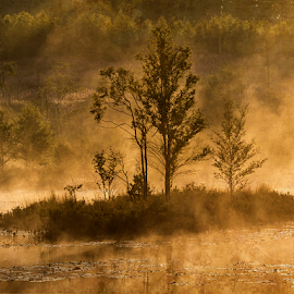 Morning mist by Peter Samuelsson - Landscapes Sunsets & Sunrises
