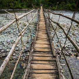 The Bridge by Nila Elect - Buildings & Architecture Bridges & Suspended Structures ( myanmar, nature, jungle, trekking, forest )