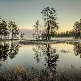 by Peter Engman - Landscapes Waterscapes