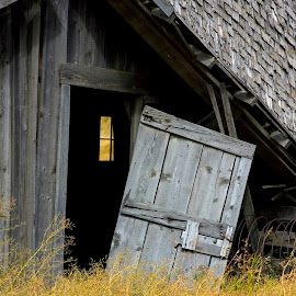 A barn returns to its roots. by Gale Perry - Buildings & Architecture Architectural Detail (  )