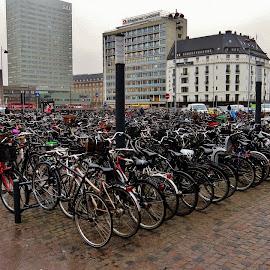 Hovedbanegården -  København by Thor Erik Dullum - Transportation Bicycles (  )