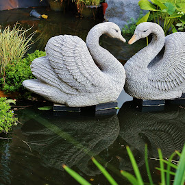 Swans by Koh Chip Whye - Artistic Objects Other Objects (  )