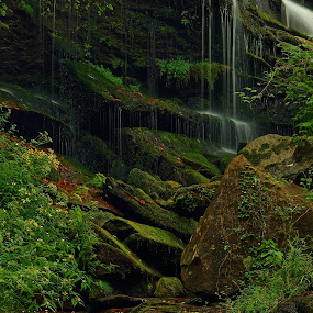 Waterfall Garden 2, Twin Falls by Jonathan Wheeler - Landscapes Waterscapes ( waterfalls, south carolina mountains, rivers, twin falls, hanging gardens )
