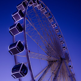 Brighton Eye (2) by John Westwood - City,  Street & Park  Amusement Parks (  )