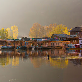 Indian Venice! by Vinod Nanaiah - Landscapes Travel ( srinagar, da lake, houseboats, fresh, reflections, lake, india, morning, golden )