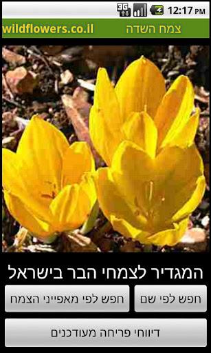 מגדיר פרחים וצמחי הבר צמח השדה