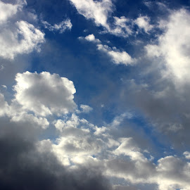 Dark Clouds, Blue Skies by Mina Thompson - Novices Only Objects & Still Life ( clouds, oregon, sky, blue, storm, morning )