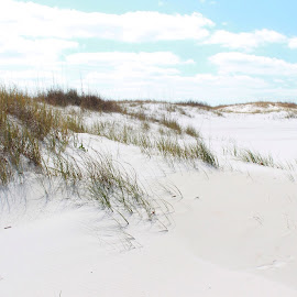 White Sands by Barton Bishop - Landscapes Beaches ( clouds, sands, dunes, white, beach, alabama, landscape, orange beach )