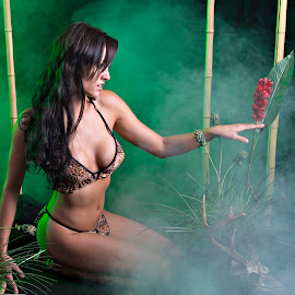 Amazon Princess by Dale Frazier - People Portraits of Women ( bamboo, passionate, bikini, purpose, pleasing, babe, sexy, forrest, greenery, pristine, fighter, passion, black, green, beautiful, amazon, warrior, princess, foggy, amazonia, fog, prize, trees, andie, leopard, tan )