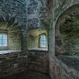 Berry Pomeroy Castle Windows by Alex Graeme - Buildings & Architecture Public & Historical ( berry pomeroy )