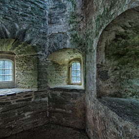 Berry Pomeroy Castle Windows by Alex Graeme - Buildings & Architecture Public & Historical ( berry pomeroy )