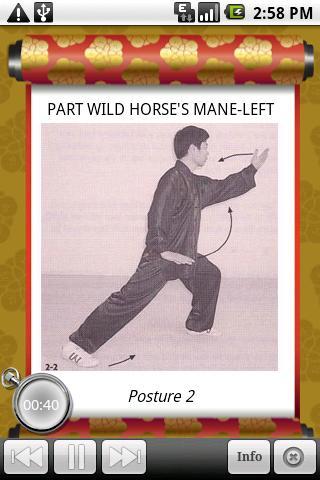 Tai Chi Master Intro