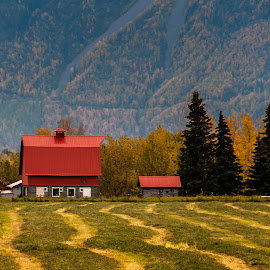 Alaskan Barn by Stephen Smith - Buildings & Architecture Other Exteriors ( field, farm, mountains, red, barn, alaska )