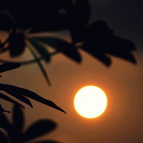 by Ashish Singla - Landscapes Sunsets & Sunrises ( Wedding, Weddings, Marriage )
