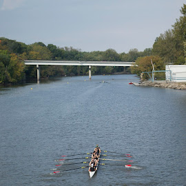 Rowing on the Des Moines River by Roy Cazares - Sports & Fitness Watersports ( winning, rowing, regatta, des moines )