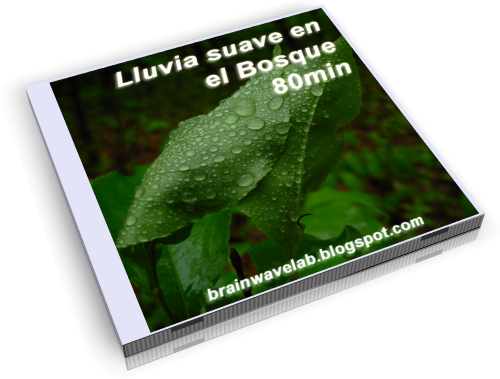 Lluvia-Bosque-WEB.png