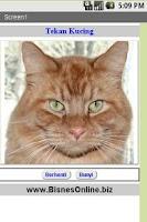 Screenshot of Bunyi Kucing