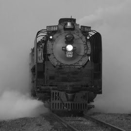 Union Pacific 844 by Larry Scott - Transportation Trains ( steam locomotive, b&w, locomotive, steam train, black & white, train, union pacific, union pacific 844, black&white, 844 )